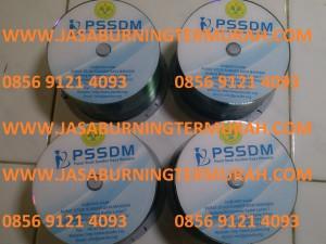jasaburningtermurah.com